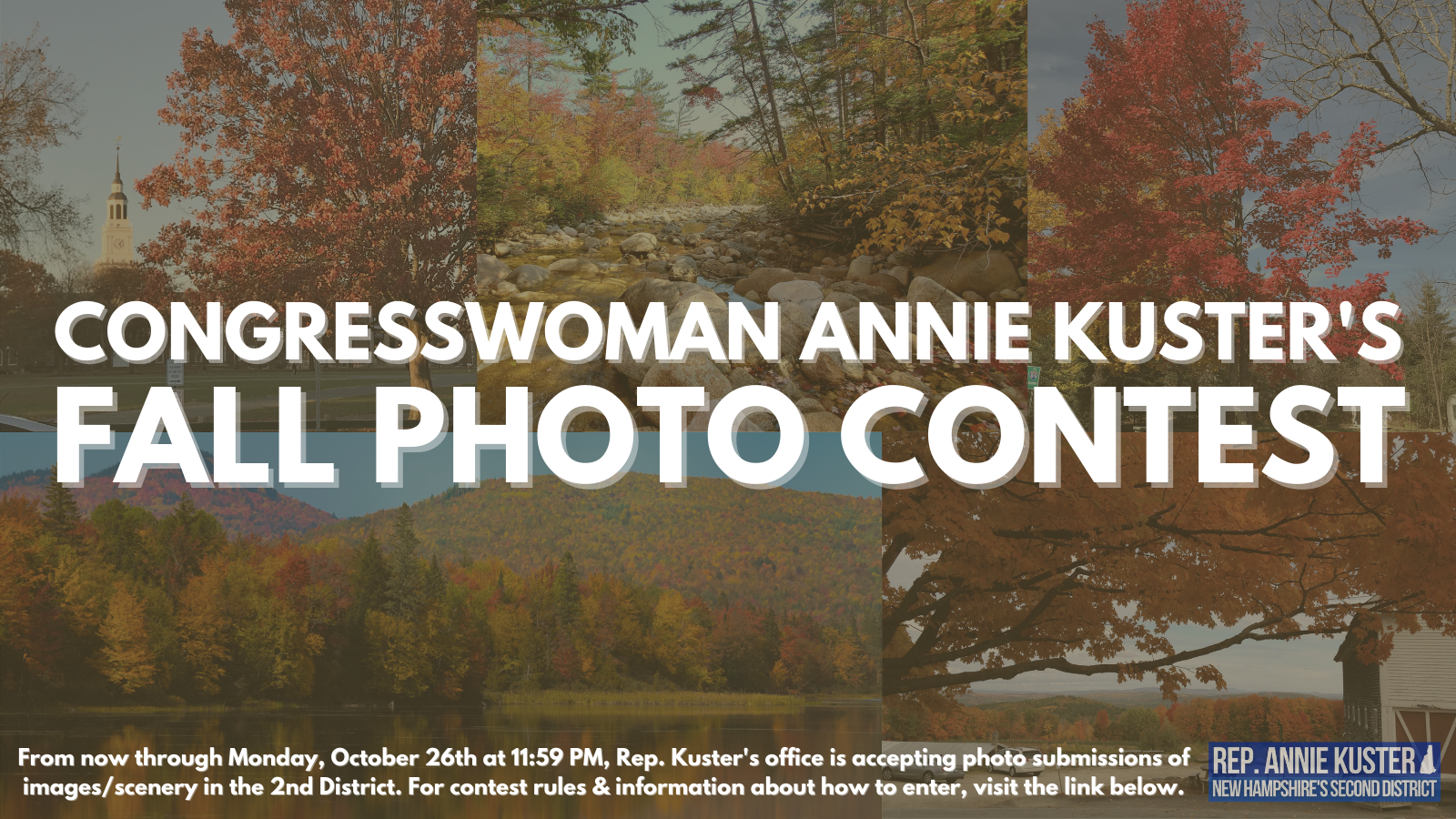 Collage for Photo Contest